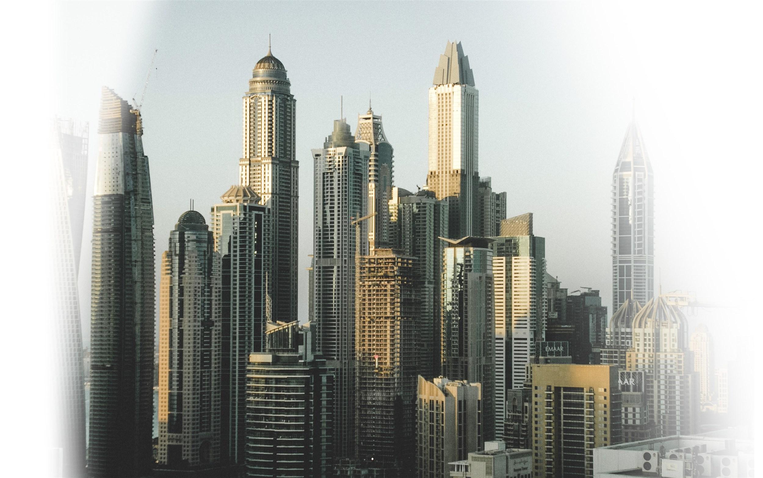 البرنامج NRL - دبي