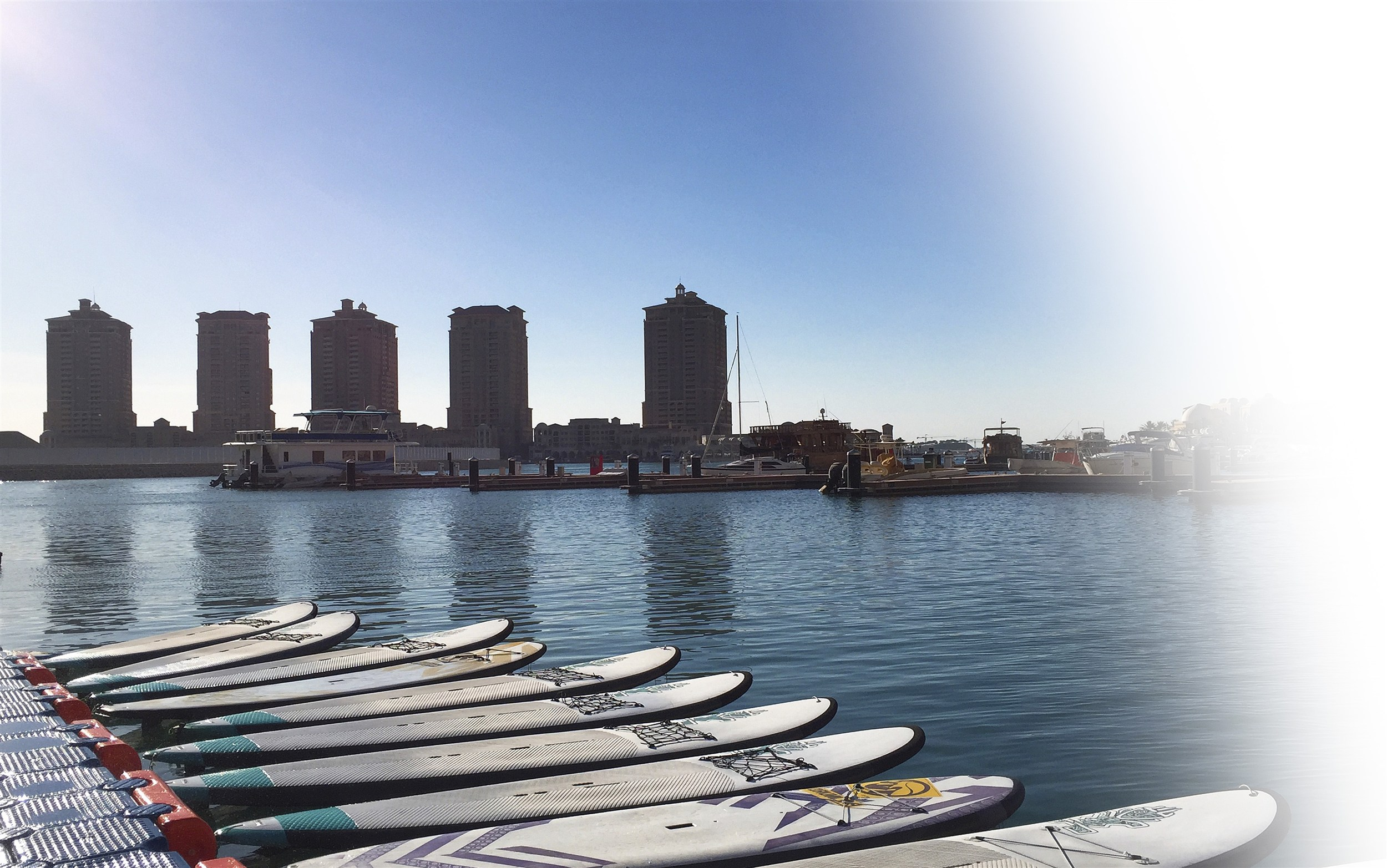 BayRoot - Qatar